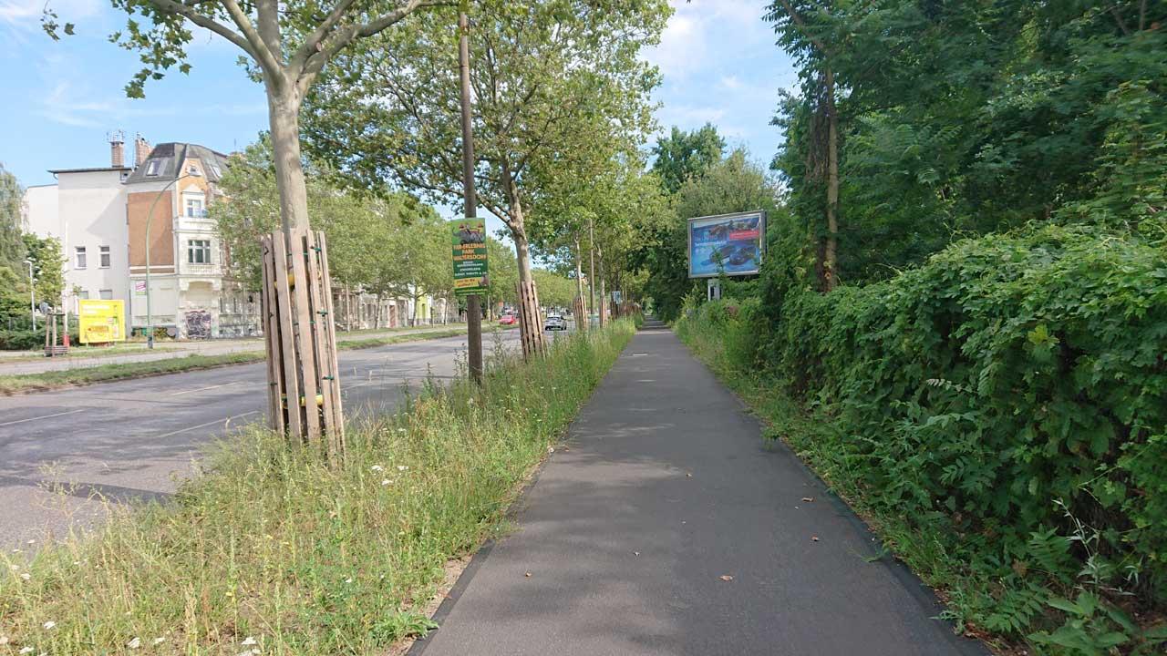 Radweg am Adlergestell Richtung Grünau