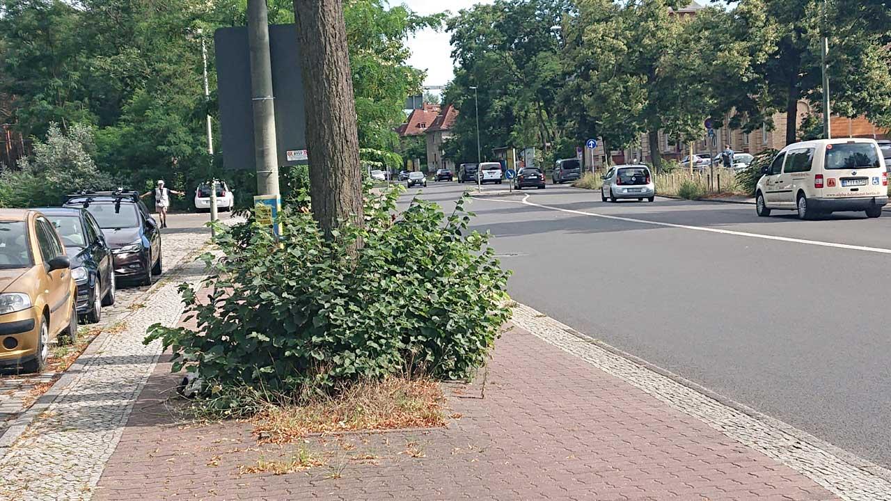 Radwege nach Schmöckwitz mit einigen Hindernissen