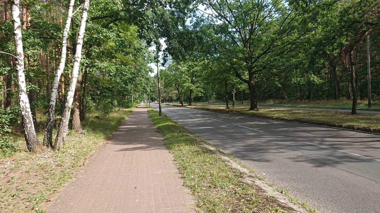 Roter Radweg als buckliger Pflasterweg Richtung Schmöckwitz
