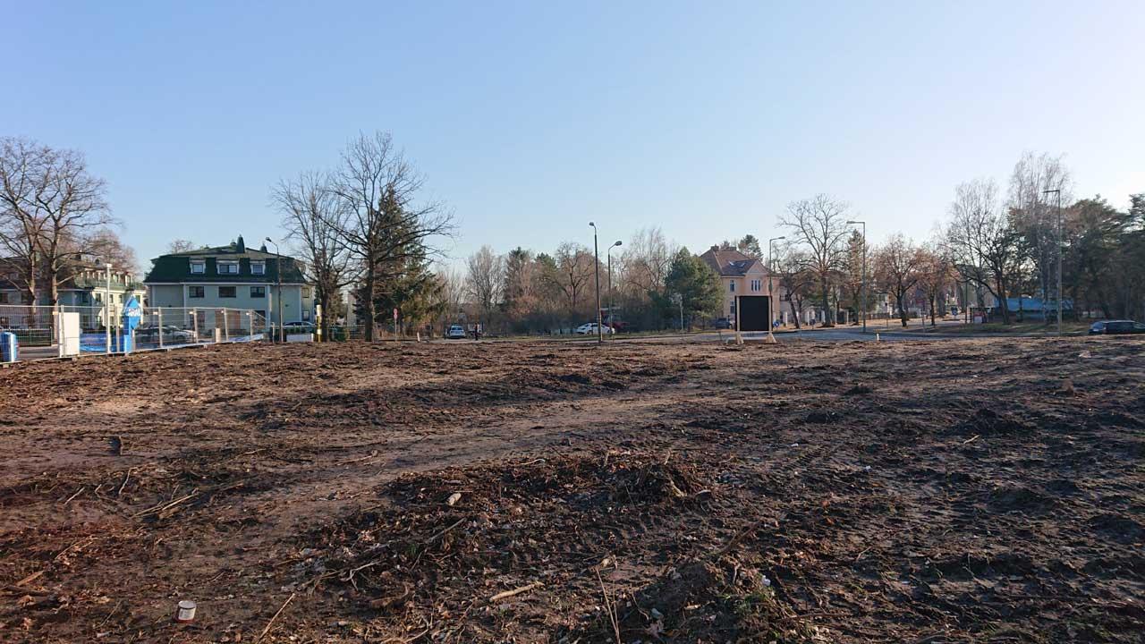 Gerodete Waldfläche für den Neubau der Feuerwache