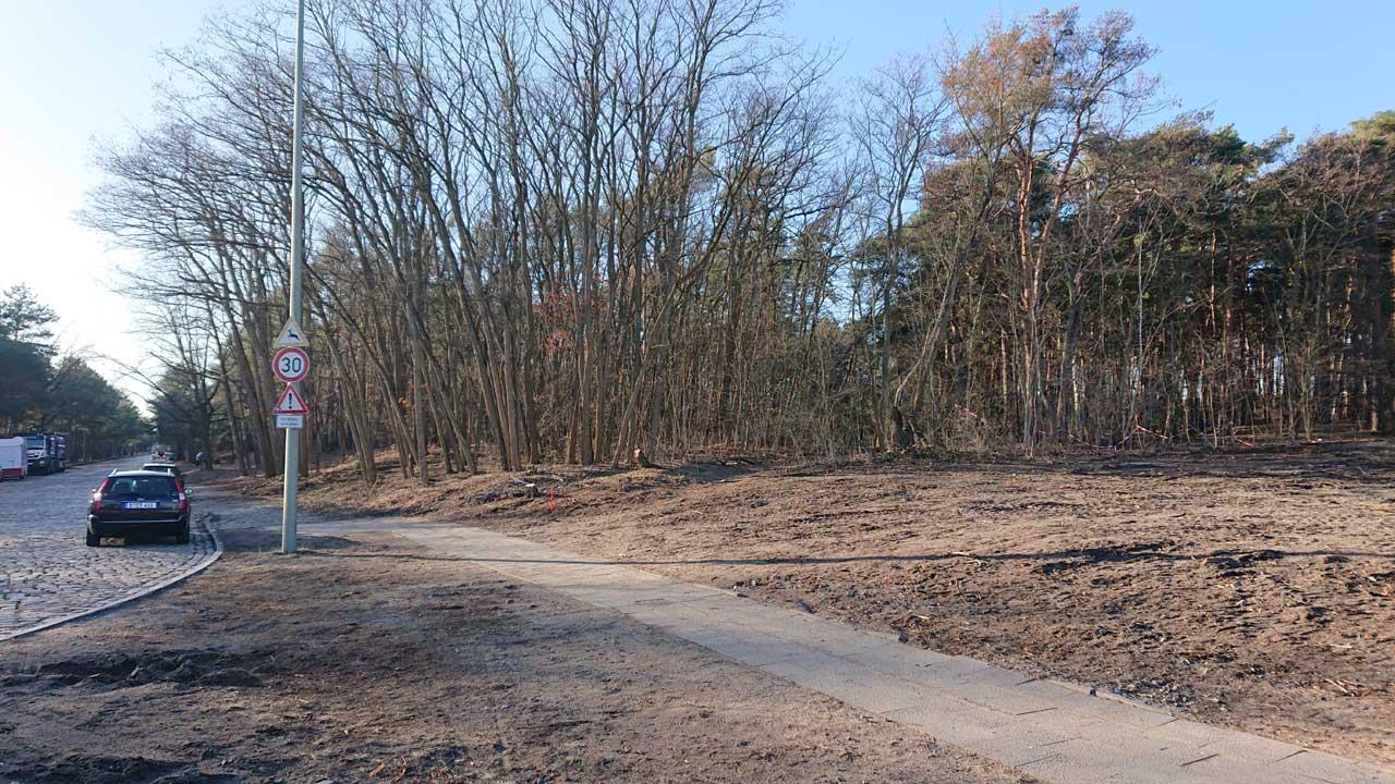 Wald muss weichen für die neue Feuerwache