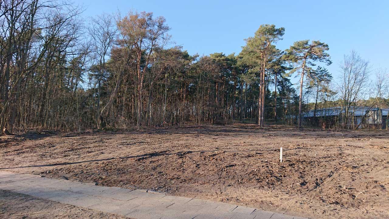 Waldfläche wird dauerhaft versiegelt für den Neubau der Feuerwache Schmöckwitz